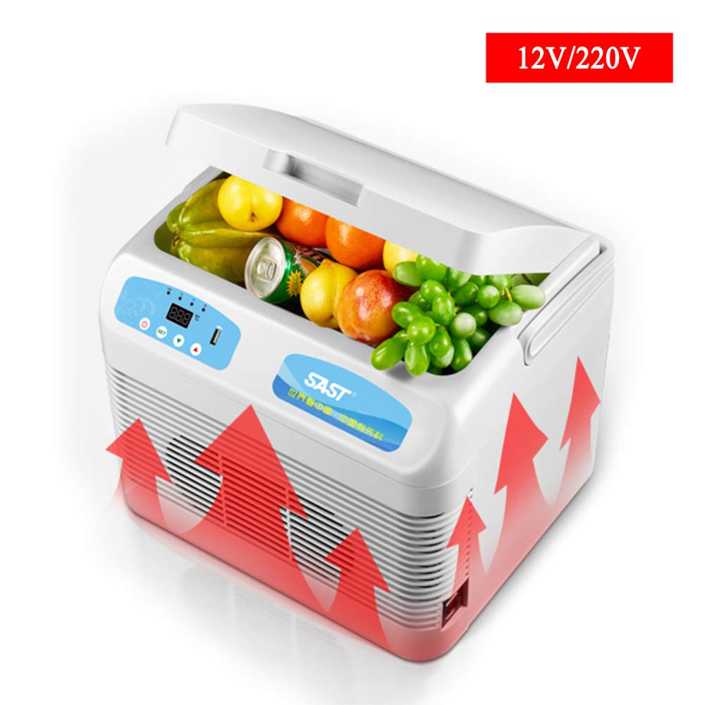 MENUDOWN Refrigerador del Coche 12L Mini Neveras de Viaje ...