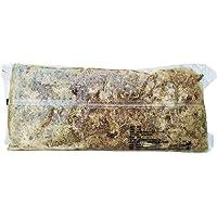 Fenteer Garden Sphagnum Moss Moisturizing Nutrition, Organic Soil Water Retention Ventilation Performance for Orchids…