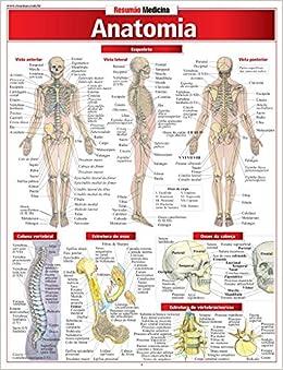 Anatomia Vincent Perez 9788588749245 Amazon Com Books