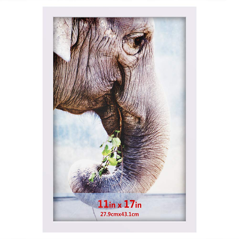 RPJC 11x17 Soild Wood Poster Frames with High Definition Glass Cover-Wall Mounting Hanging Picture Frame White by RPJC