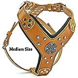Bestia Maximus Silver big dog leather harness