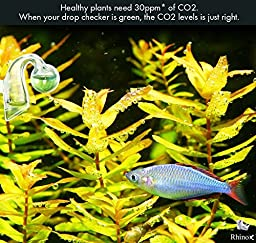 Rhinox Glass Drop Checker Kit - 3 Seconds to Read CO2 levels: 3 Minutes to Setup: Fastest way to ensure sufficient CO2 in Planted Aquarium