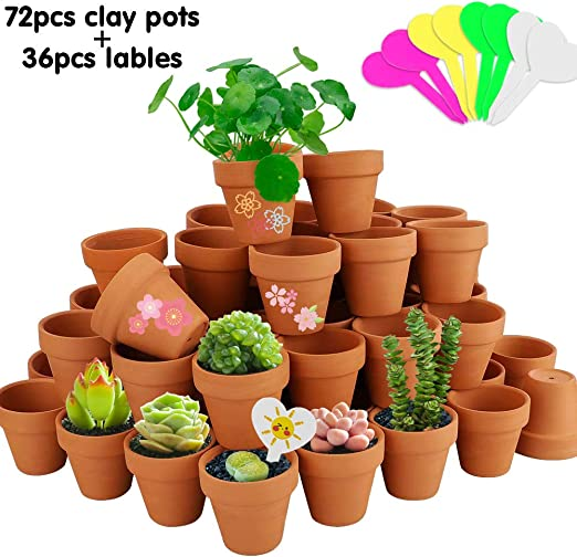 Amazon Com Nilos Terracotta Pot 72 Pcs 2inch Mini Clay Pots Ceramic Pottery Planter Cactus Flower Pots Succulent Pot For Plants Wedding Craft Home Kitchen