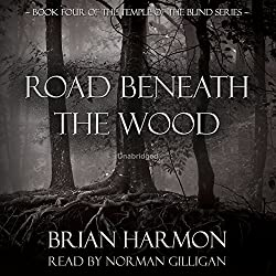 Road Beneath the Wood