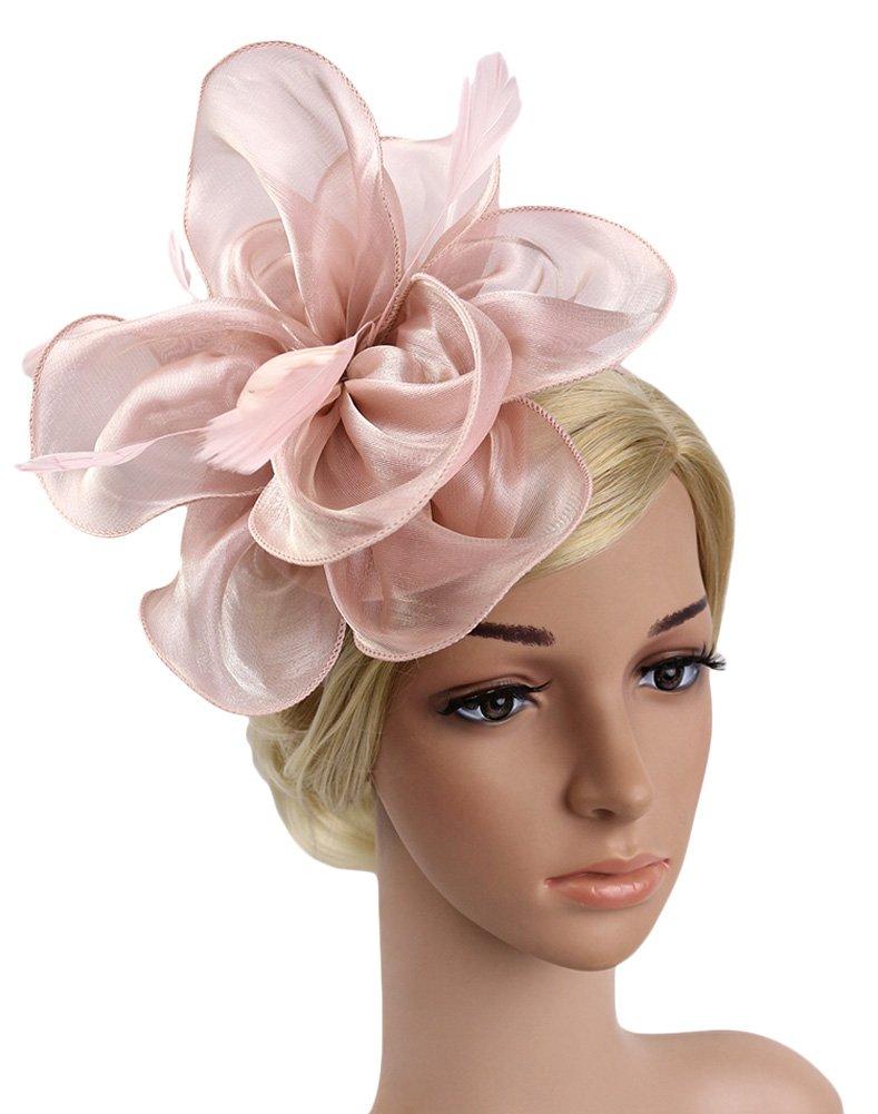 Urban CoCo Women's Vintage Flower Feather Mesh Net Fascinator Hair Clip Hat Party Wedding (Nude Pink-Series 4)