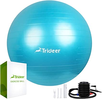 Trideer Exercise Ball (Multiple Sizes), Yoga Ball, Birthing Ball with Quick Pump, Anti-Burst & Extra Thick, Heavy Duty Ball Chair, Stability Ball ...