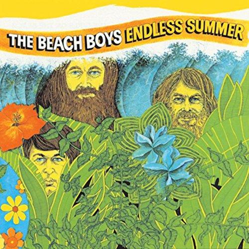 Beach Boys Fan - Endless Summer