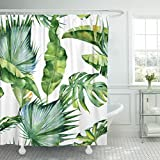 TOMPOP Shower Curtain Colorful Leaf Watercolor of Tropical Leaves Dense Jungle Pattern with Tropic Summertime Design Green Palm Waterproof Polyester Fabric 72 x 72 inches Set with Hooks