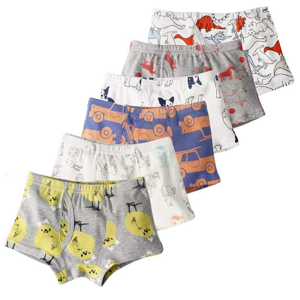 Aschic Little Boy's Soft Cotton Boyshorts Underwear Toddler Kid's 6-Pack Assorted Boxer Briefs