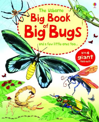 Download The Usborne Big Book of Big Bugs: And a Few Little Ones Too... pdf