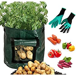 Amabana Potato Grow Bags With Garden Gloves,2 Pack 10 Gallon Vegetables Planter Bags with Access Flap, Raised Garden Bed Heavy Duty Suitable for Planting Vegetables, Taro, Radish, Carrots, Onions