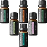 Onepure Aromatherapy Essential Oils Gift Set, 6 Bottles/10ml each, 100% Pure (Lavender, Tea Tree, Eucalyptus, Lemongrass, Sweet Orange, Peppermint)
