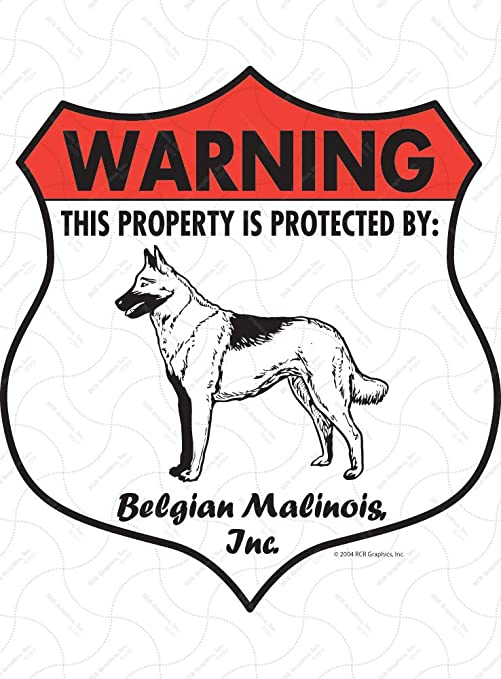Belgian Malinois coloring page | Free Printable Coloring Pages | 679x501