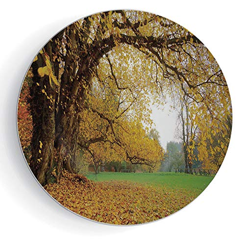 """iPrint 6"""" Ceramic Decorative Plate Fall Pattern Ceramic Plate Autumnal Park with Big Ancient Oak Tree and Deciduous Leaves Greenery"""
