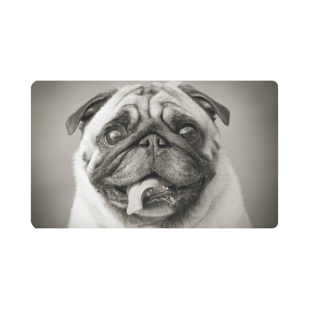 InterestPrint Funny Pug Puppy Dog Animals Doormat Anti-Slip Entrance Mat Floor Rug Indoor/Outdoor Door Mats Home Decor, Rubber Backing Large 30''(L) x 18''(W)