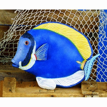 - Museum Quality Powder Blue Tang Tropical Fish Statue, 14