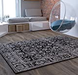 Charcoal Traditional Distressed 5 x 7 [ 5'3″ x 7'3″ ] Area Rug Modern Vintage Transitional Rug Soft Living Dining Room Contemporary Area Rug