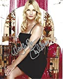 NICOLLETTE SHERIDAN as EDIE BRITT in'DESPERATE HOUSEWIVES' Signed 8x10 Color Photo