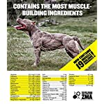 Bully Max Muscle Supplements for Dogs - Protein for Dogs to Build Muscle, Mass, Dog Weight Gain Supplement for Your Pitbull Puppy & Adult Dog - Dog Supplement for American Bully 10