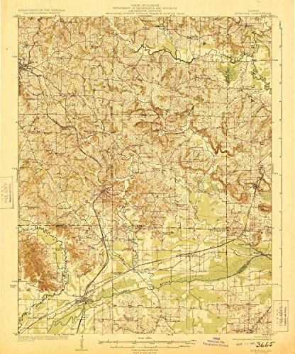 YellowMaps Dongola IL topo map, 1:62500 Scale, 15 X 15 Minute, Historical, 1923, 19.5 x 16.2 in - Polypropylene
