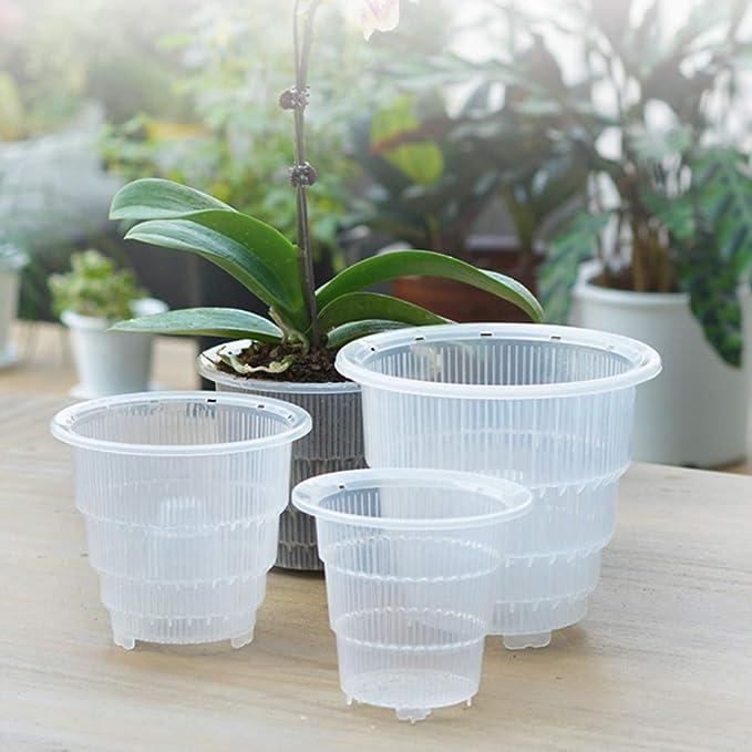 7 x 12cm = 14 14 x vasi di plastica trasparente Orchidea Orchidea Pianta Pentole 7 x 15cm