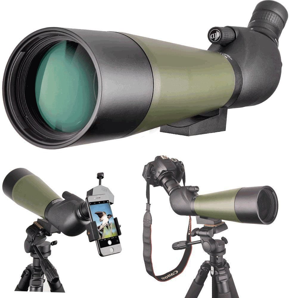 品質は非常に良い EIKWW 望遠鏡 低夜間視界のHDの単眼望遠鏡はバードウォッチング EIKWW/キャンプ/旅行/ハイキング/監視のための三脚が付いている大人のための防水スコープを レンズ 望遠鏡、焦点距離、子供、バードウォッチング B07QXPK9J3, ウルトラミックス:5329ffdc --- arianechie.dominiotemporario.com