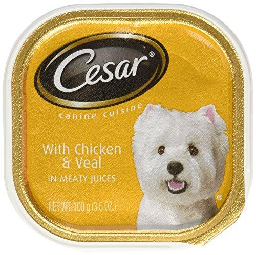 Cesar Pet Food Cesar Canine Cuisine Wet Dog Food with Chicke