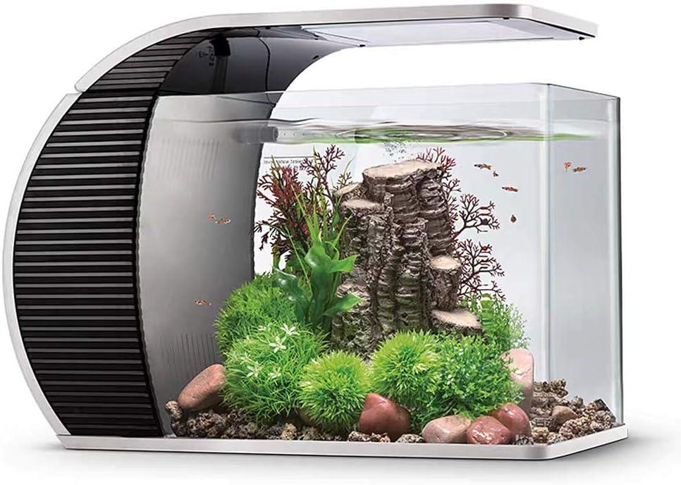 Hygger - Set acquario a LED in vetro da 19 litri, panorama aquarium con filtro nascosto, illuminazione a LED (3 modalità di colore a scelta)