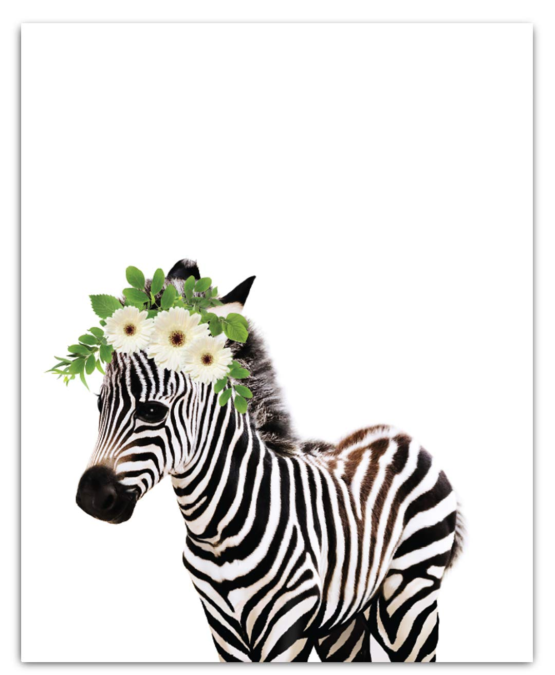 Option 2 Floral Crown Nursery Decor Art Set of 4 UNFRAMED Wall Prints 8x10 Designs by Maria Inc