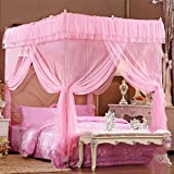 Four corner princess wind mosquito net bed canopy, Three-door opener Stand landing Court Double Home mosquito-curtain-E King