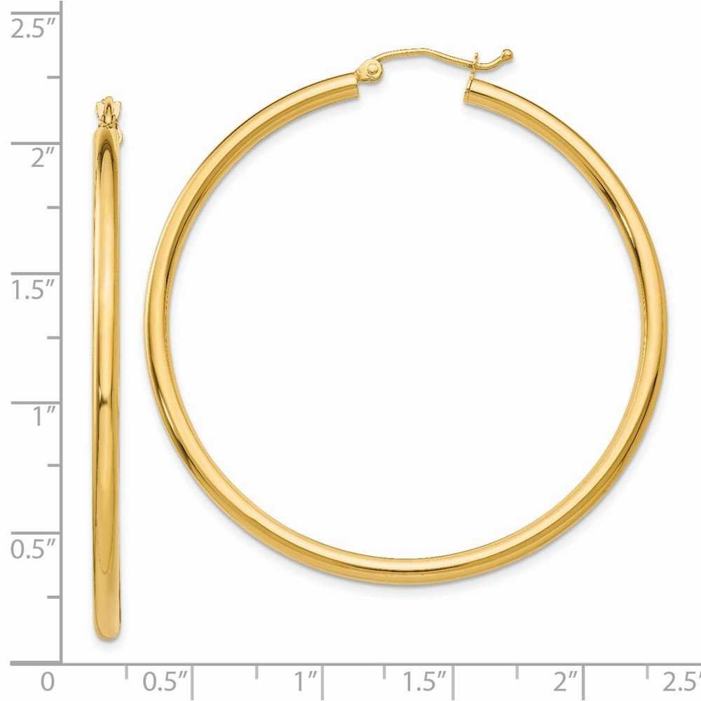 45x2.5mm Ideal Gifts For Women 10k Yellow Gold Polished 2.5mm Round Hoop Earrings