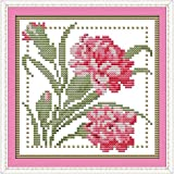 Good Value Stamped Cross Stitch Kits Beginners Kids Advanced - Twelve Months Flower 11 CT 8