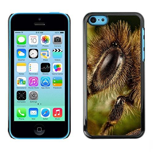 Premio Sottile Slim Cassa Custodia Case Cover Shell // F00010901 insecte // Apple iPhone 5C
