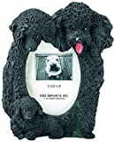 Black Poodle  Picture Frame Holds Your Favorite 3 x 5 Inch Photo,  A Hand Painted Realistic Looking Black Poodle  Family Surrounding  Your Photo. This Beautifully Crafted Frame is A Unique Accent To Any Home or Office. The Black Poodle  Picture Frame Is T