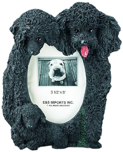 Frame Poodle (Black Poodle  Picture Frame Holds Your Favorite 3 x 5 Inch Photo,  A Hand Painted Realistic Looking Black Poodle  Family Surrounding  Your Photo. This Beautifully Crafted Frame is A Unique Accent To Any Home or Office. The Black Poodle  Picture Frame Is The Perfect Gift For Black Poodle  Owners And Lovers!)