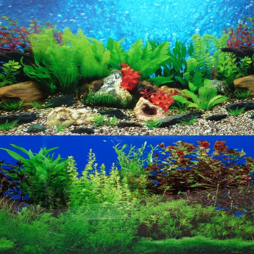 9085 12″ x 48″ Fish Tank Background River Bed/Lake
