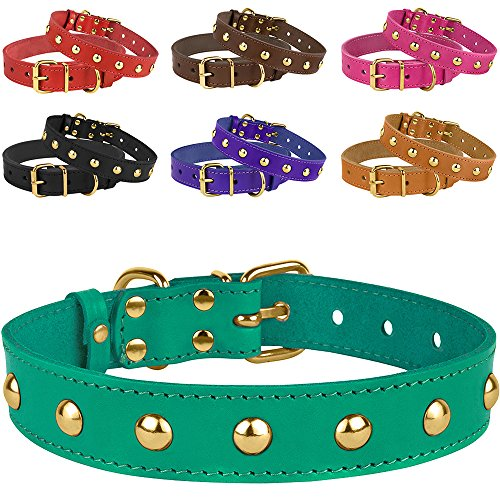 """BronzeDog Leather Studded Dog Collar, Brass Plated Hardware Pet Collars for Cats Puppy Small Medium Large Dogs Red Pink Purple Black Brown Turquoise (Neck Size 12""""-15"""", Turquoise)"""