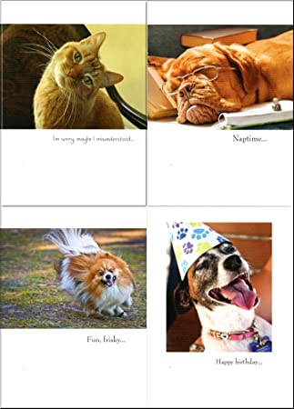 Amazon outrageous and hilarious 24 birthday cards with dog and outrageous and hilarious 24 birthday cards with dog and cat themes jg bassett bookmarktalkfo Gallery