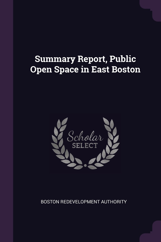 Summary Report, Public Open Space in East Boston ebook