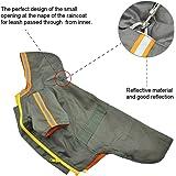 Palmula Dog Hoodie Raincoat with Zipper,Waterproof Fashion Hand-Cut Jacket for Small Medium