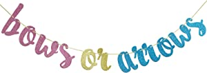 Bows Or Arrows Banner , Baby Shower, Gender Reveal Party , Glitter Party Decor (Blue, Gold &Pink))