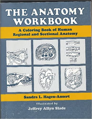 The Anatomy Workbook A Coloring Book Of Human Regional And Sectional