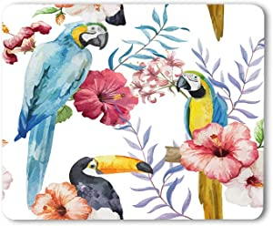 Moslion Bird Mouse Pad Watercolor Flower Print Animal Parrot Branches Beautiful Summer Plant Gaming Mouse Mat Non-Slip Rubber Base Thick Mousepad for Laptop Computer PC 9.5x7.9 Inch