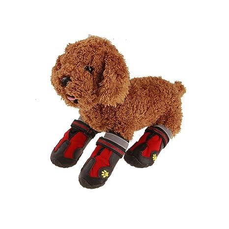 V-Do Botas de perro Verano Antideslizante Resistencia al desgarro Mascotas Botines para Gatos Impermeable