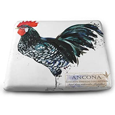 Tinmun Square Cushion, Ancona Rooster Poultry Farming Chicken Large Pouf Floor Pillow Cushion for Home Decor Garden Party: Home & Kitchen
