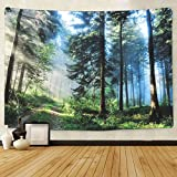 BLEUM CADE Misty Forest Tapestry Wall Hanging Sunshine Through Trees Tapestry Magical Nature Landscape Tapestry for Bedroom Living Room Dorm