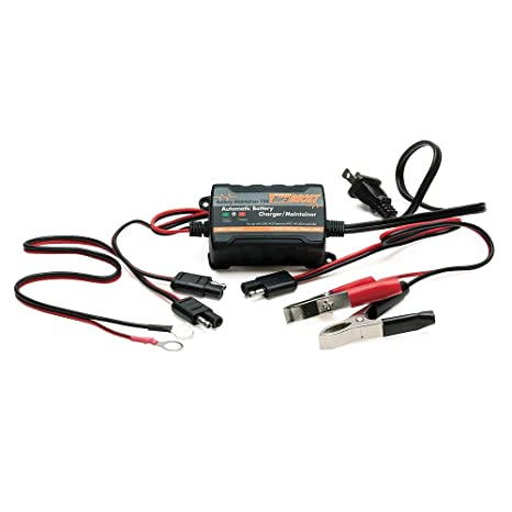 Amazon.com: duraboost batería Mantenedor 750, N/A: Automotive