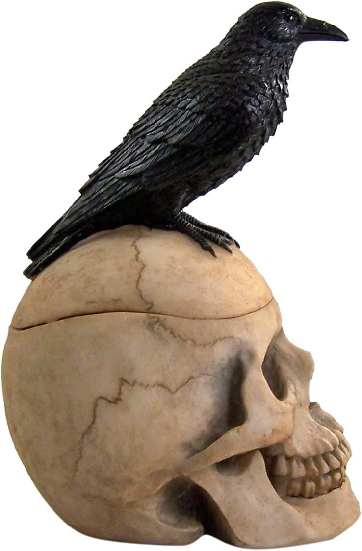 9 1//2 Inches Wowser Nevermore Crow and Skull Trinket Jewelry Storage Box