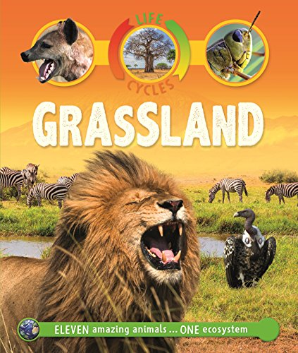 Life Cycles: Grassland