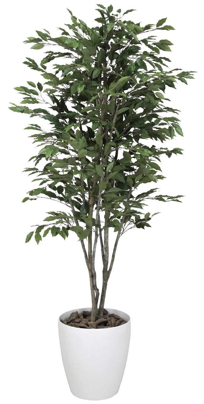 光触媒 人工観葉植物 光の楽園 ベンジャミンツリー 1.6m 156C380 B01IGBWMN2  幅65×奥行65×高さ160cm